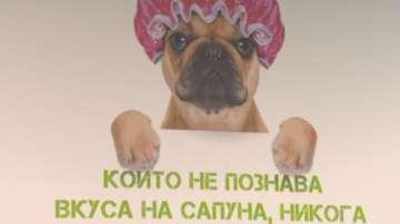 Нестандартно предложение - обществена баня за кучета