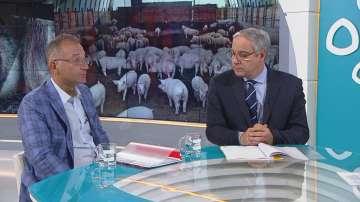 При чума загубите за индустриалните свиневъди може да достигнат 2 млрд. лв.