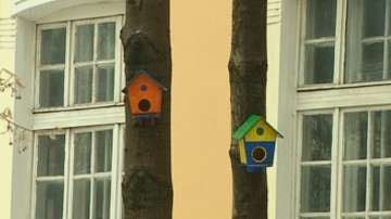 Ученици от Русе направиха къщички за птици