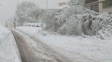 АПИ: До 40 см е снежната покривка в Смолянско, шофирането е при зимни условия