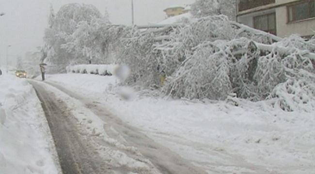 апи снежната покривка смолянско шофирането зимни условия