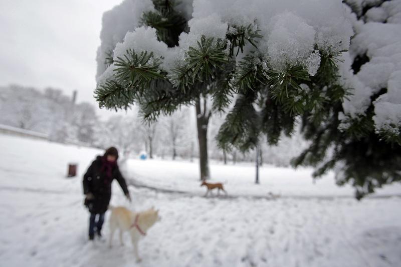 снимка 3 Катастрофи, временно затворени пътища и ограничения в движението заради снега