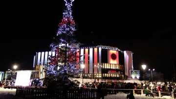 Коледната елха в София грейна в светлини (СНИМКИ + ВИДЕО)