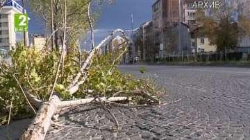 Жълт код за вятър в София и страната