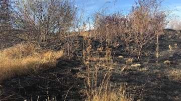 Няма пострадали и щети след пожара над вилна зона Княжево