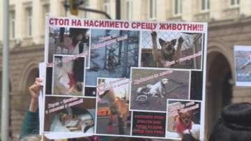 Протест срещу насилието върху животни в центъра на София