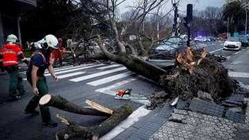 Бури, студ и снеговалежи сковаха Испания и Италия (СНИМКИ)