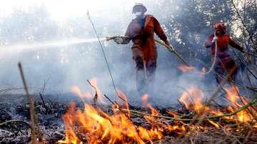 Многобройни пожари бушуват в Аржентина