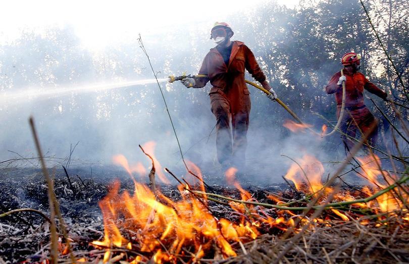 многобройни пожари бушуват аржентина