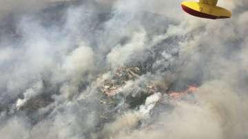Девет пожарникари са ранени в два пожара в Португалия