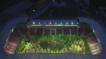 Природата като развлечение - как стадион в Австрия се превърна в гора