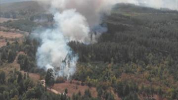 Овладян е пожарът в Казанлъшко
