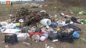 Откриха яма с животински отпадъци в квартал в Стара Загора
