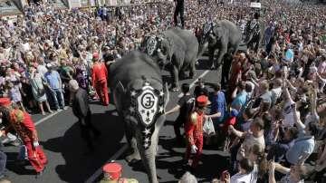 Парад на слонове в Санкт Петербург