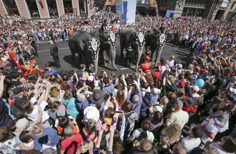 снимка 3 Парад на слонове в Санкт Петербург
