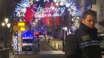 Отварят коледния базар в Страсбург за посетители
