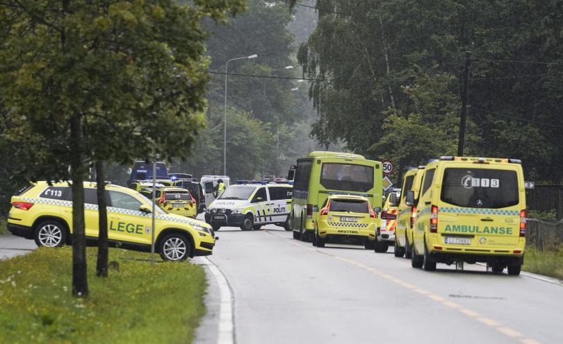 снимка 3 Стрелба в джамия в Норвегия, ранен е човек