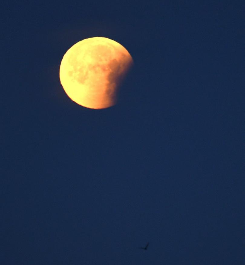 снимка 2 Феноменът Супер синя кървава Луна (СНИМКИ / ВИДЕО)