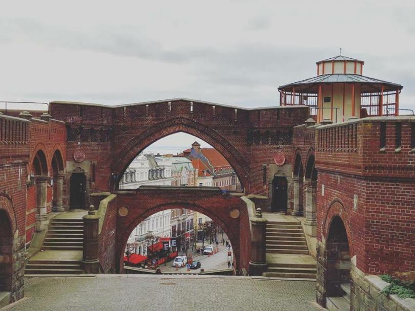 """снимка 3 """"Отвъд границите"""": Юлия Кошаревска: И да не живееш в България, можеш да помагаш"""