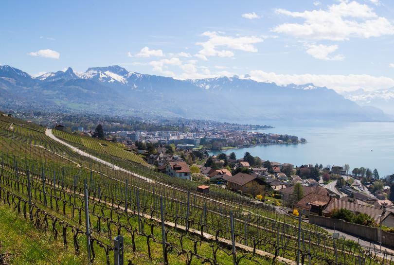 От 1 януари Швейцария ще стане първата държава, която успешно