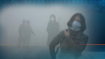 СЗО: Дишането на чист въздух е лукс, който малцина могат да си позволят