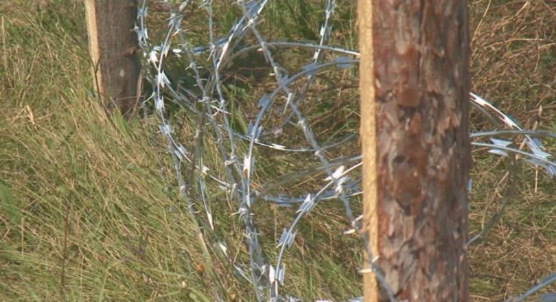 изградени 110 телената ограда границата румъния заради чумата