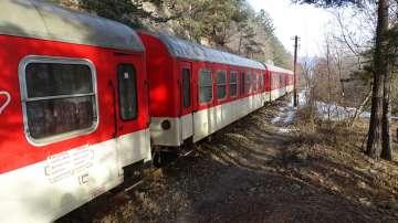 Теснолинейката Септември-Добринище с допълнителни вагони за 3 март