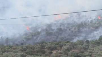 Гръцкият остров Тасос остава в плен на огнената стихия