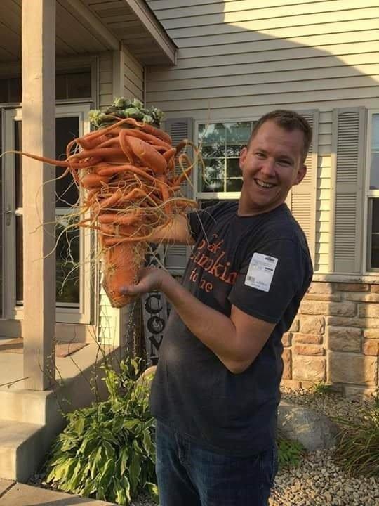 Американски градинар отгледа най-тежкия морков в света