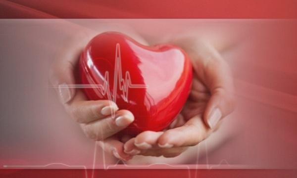 Броят на българите, които се нуждаят от транплантация на орган