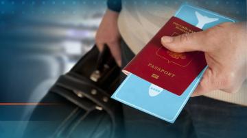 Измами с безплатни електронни визи за Русия