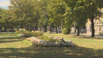 Кой и как се грижи за озеленяването в София?