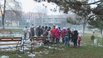 Деца спасяват птиците през зимата