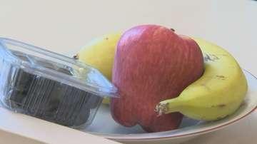 Стотици училища и градини остават без плод и мляко заради хаос в наредбата