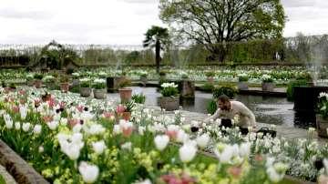 Бяла градина в памет на принцеса Даяна откриха до двореца Кенсингтън (ГАЛЕРИЯ)