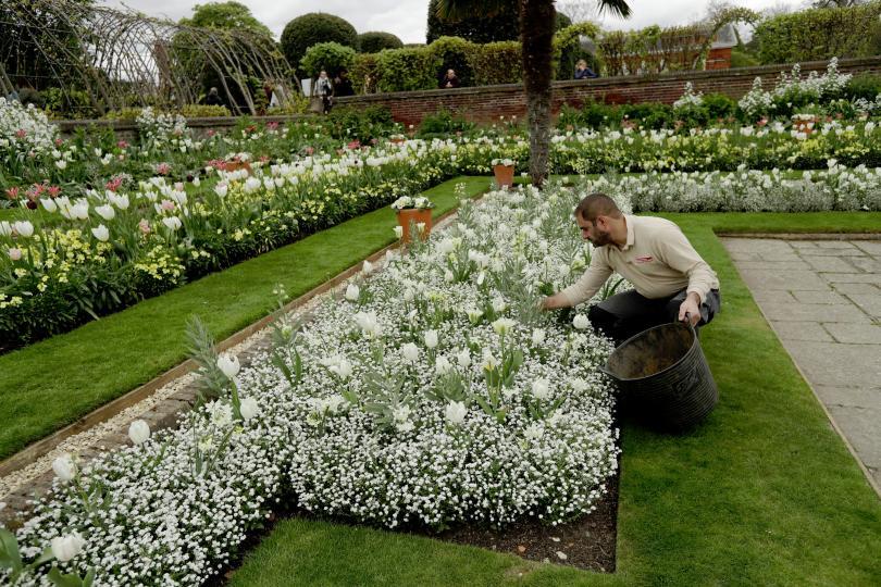 снимка 2 Бяла градина в памет на принцеса Даяна откриха до двореца Кенсингтън (ГАЛЕРИЯ)