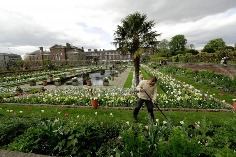 снимка 7 Бяла градина в памет на принцеса Даяна откриха до двореца Кенсингтън (ГАЛЕРИЯ)