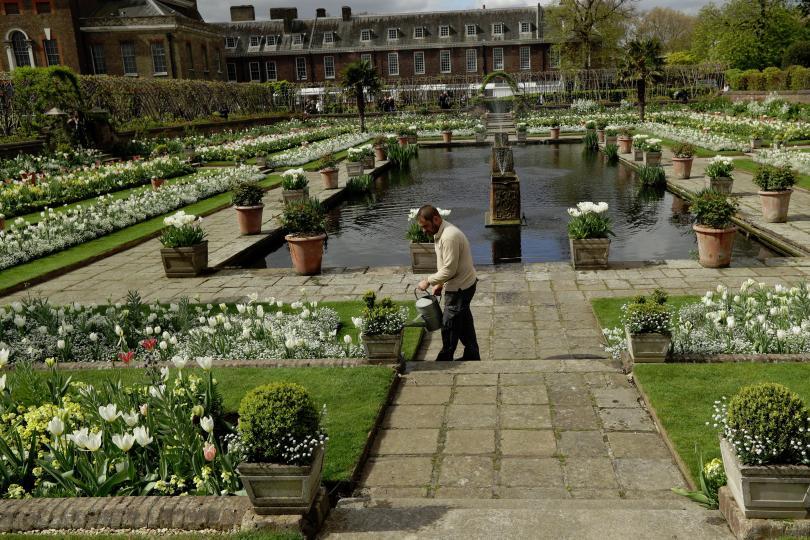 снимка 8 Бяла градина в памет на принцеса Даяна откриха до двореца Кенсингтън (ГАЛЕРИЯ)