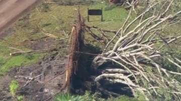 Природни бедствия покосиха Северна и Южна Америка