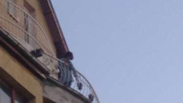 Жена хвърля саксии от балкона си