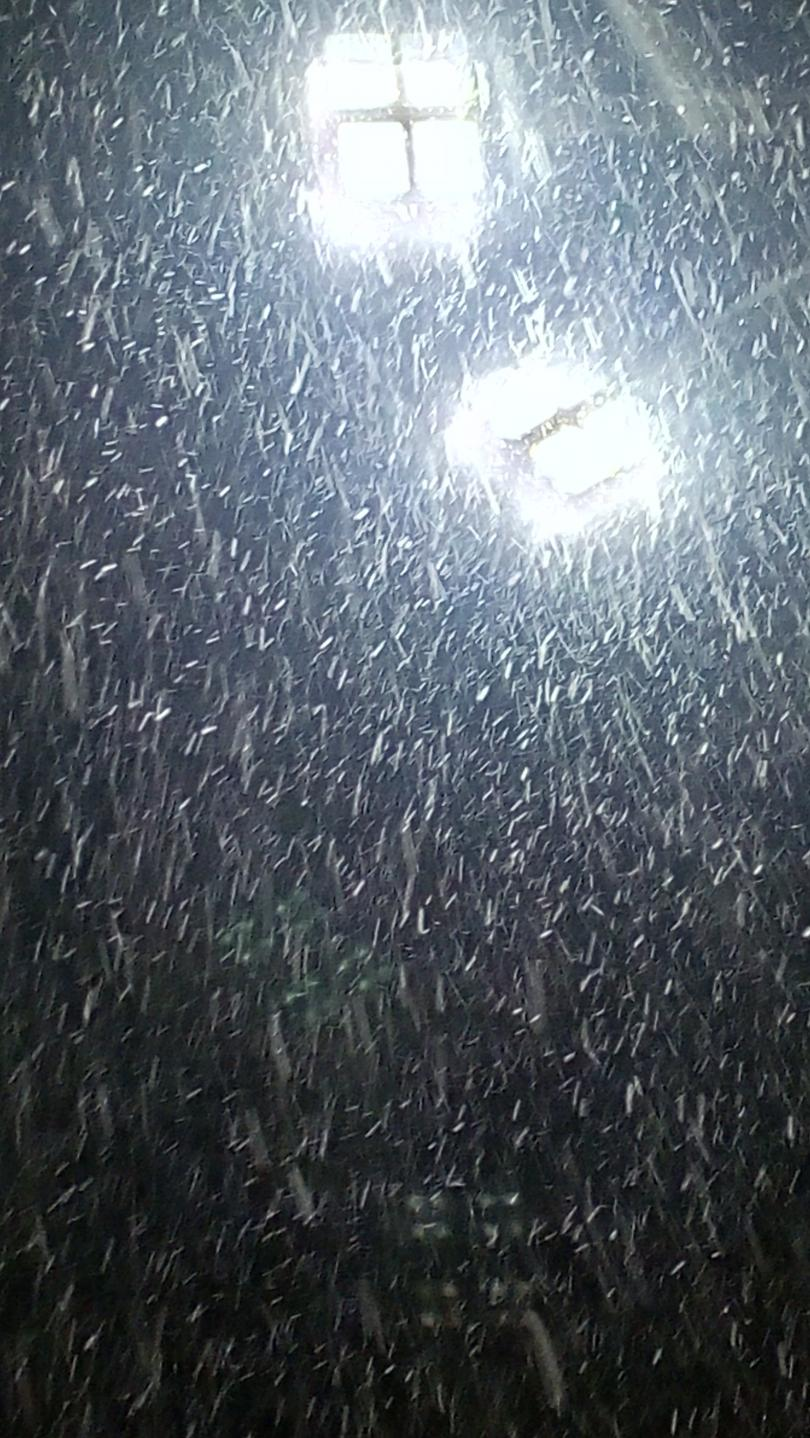 снимка 1 Зима в квартала