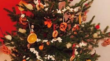 Коледна еко украса