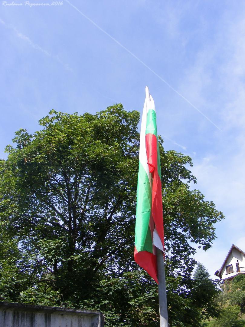 снимка 6 4-метров трибагреник се развява в кв. Лъгът Троян