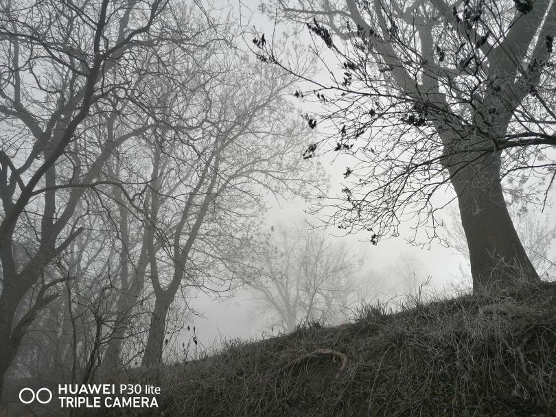 снимка 1 Красотата на мъгливия ден