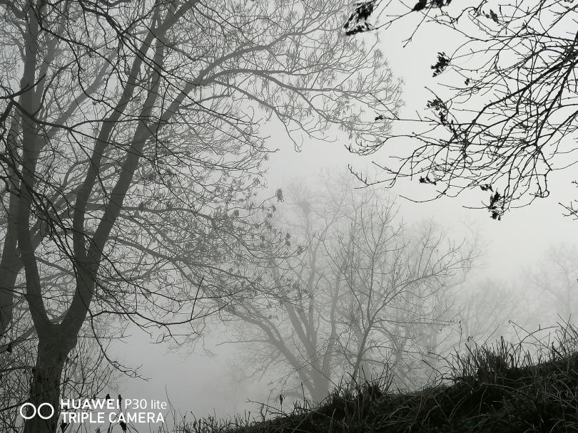Красотата на мъгливия ден