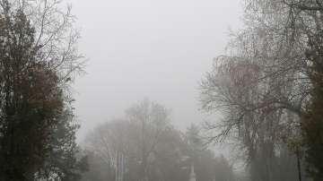 Капчици мъгла