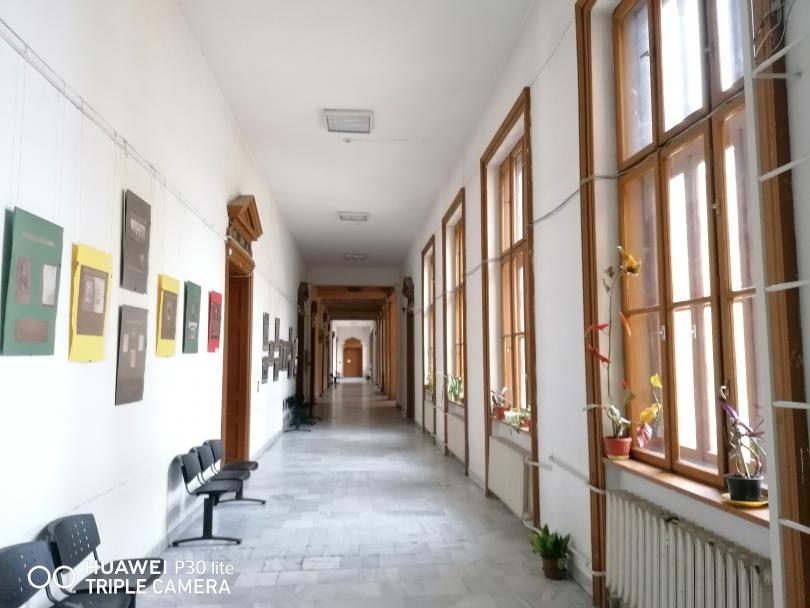 снимка 7 Разходка в Търговската гимназия в Свищов