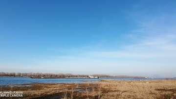 Януарска пролет край Дунав при Свищов