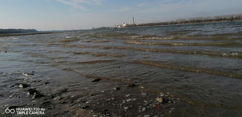 снимка 6 На брега на Дунав