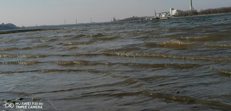 снимка 5 На брега на Дунав